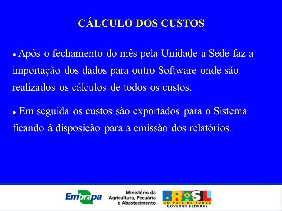 CÁLCULO DOS CUSTOS Após o fechamento do mês pela Unidade a Sede faz a importação dos dados para outro Software onde são realizados os cálculos de todo