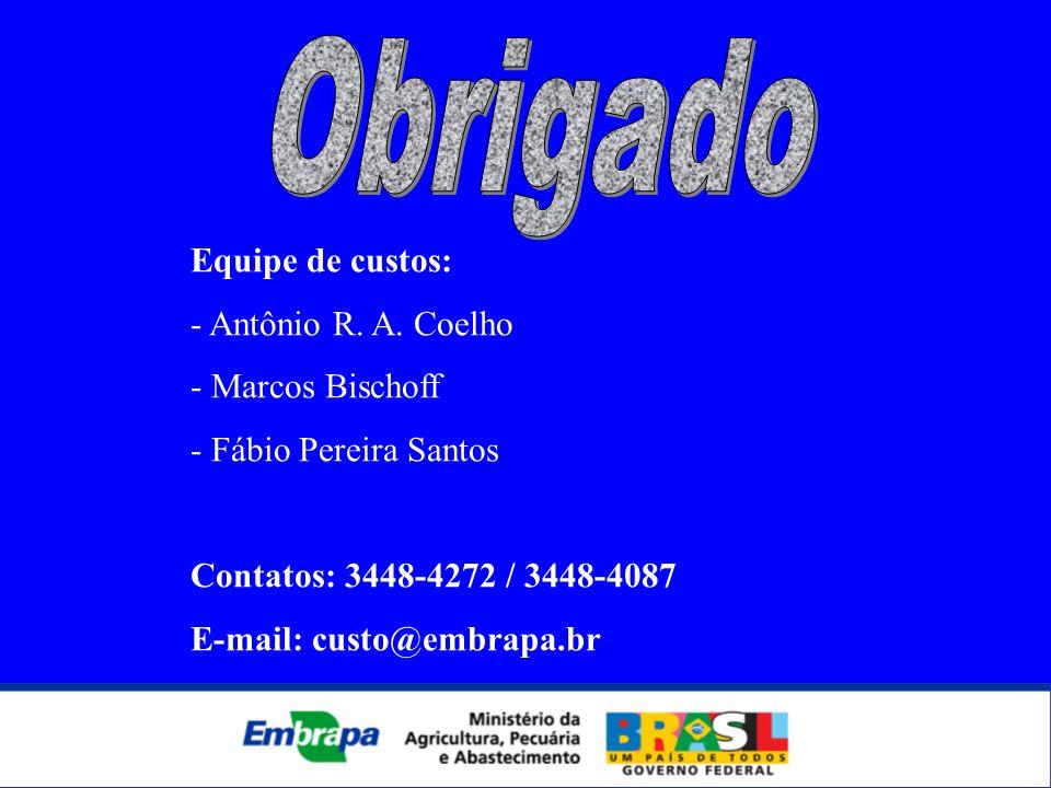 Equipe de custos: - Antônio R. A. Coelho - Marcos Bischoff - Fábio Pereira Santos Contatos: 3448-4272 / 3448-4087 E-mail: custo@embrapa.br