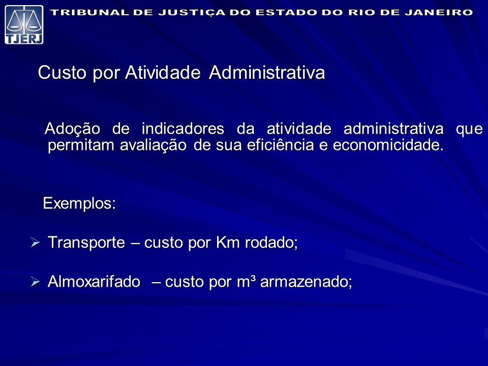 Custo por Atividade Administrativa Adoção de indicadores da atividade administrativa que permitam avaliação de sua eficiência e economicidade.