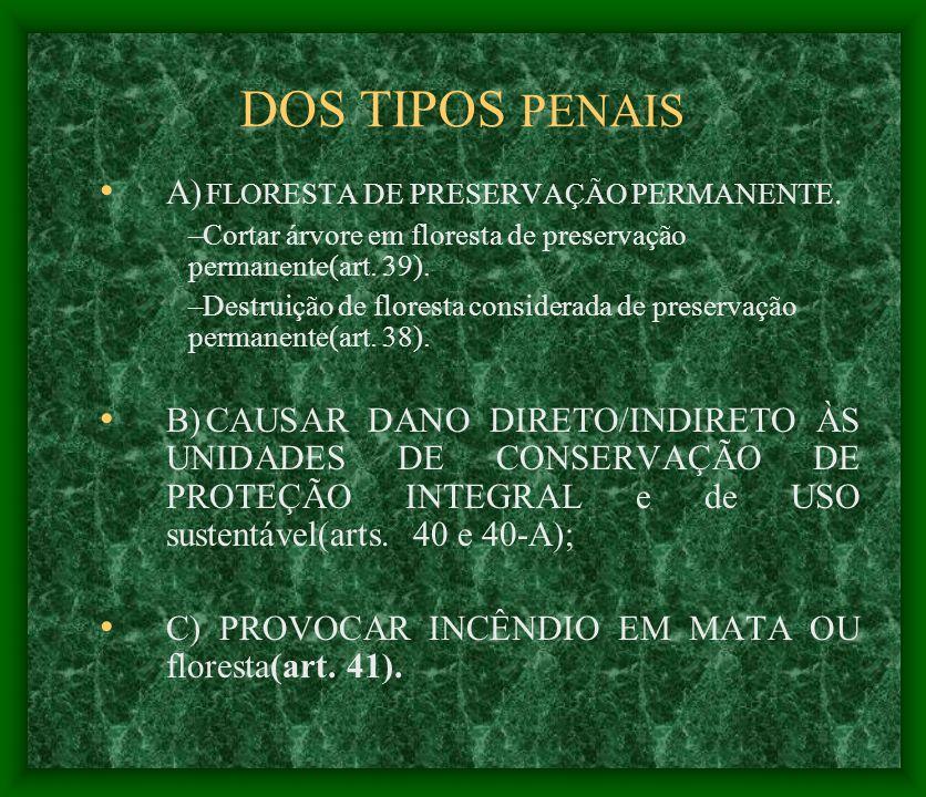 DOS TIPOS PENAIS A) FLORESTA DE PRESERVAÇÃO PERMANENTE. –Cortar árvore em floresta de preservação permanente(art. 39). –Destruição de floresta conside