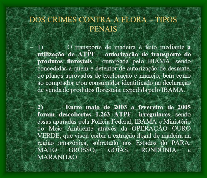 DOS CRIMES CONTRA A FLORA – TIPOS PENAIS –1) O transporte de madeira é feito mediante a utilização de ATPF – autorização de transporte de produtos flo