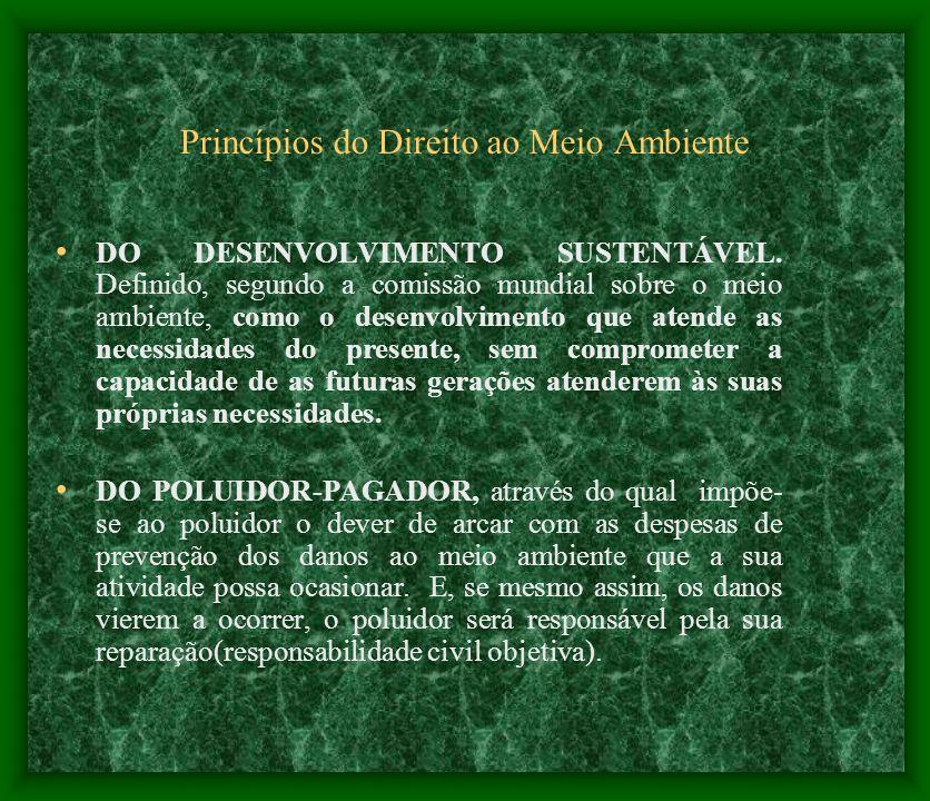 Princípios do Direito ao Meio Ambiente DO DESENVOLVIMENTO SUSTENTÁVEL. Definido, segundo a comissão mundial sobre o meio ambiente, como o desenvolvime