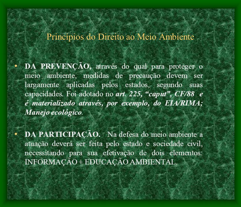 Princípios do Direito ao Meio Ambiente DA PREVENÇÃO, através do qual para proteger o meio ambiente, medidas de precaução devem ser largamente aplicada