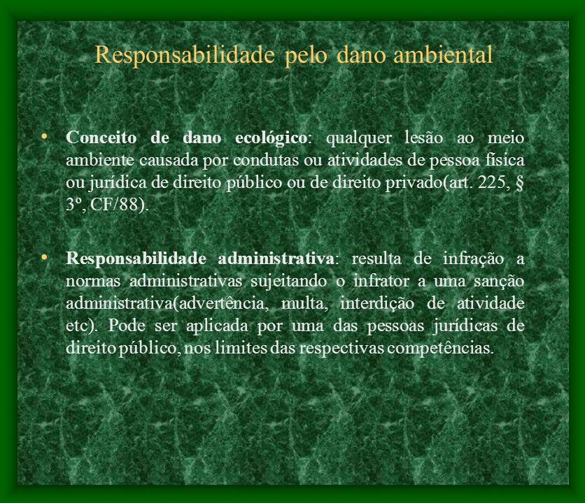 Responsabilidade pelo dano ambiental Conceito de dano ecológico: qualquer lesão ao meio ambiente causada por condutas ou atividades de pessoa física o