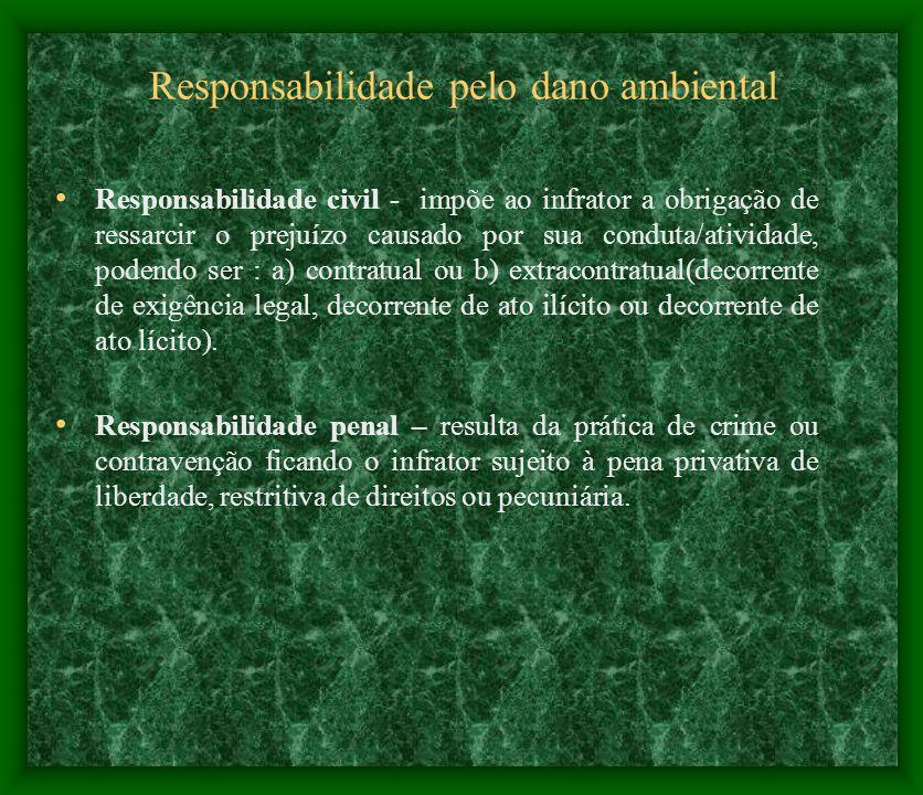 Responsabilidade pelo dano ambiental Responsabilidade civil - impõe ao infrator a obrigação de ressarcir o prejuízo causado por sua conduta/atividade,