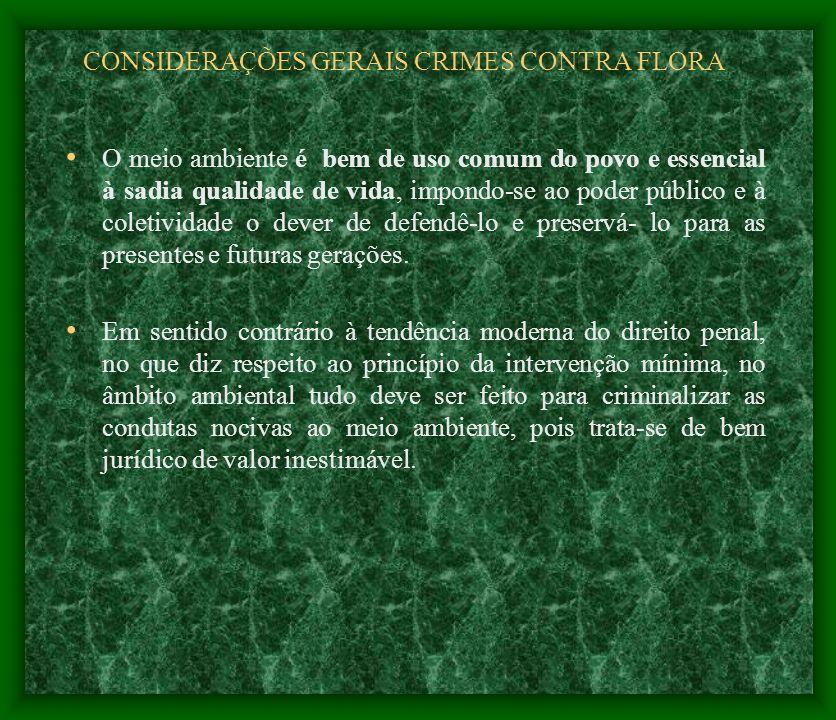CONSIDERAÇÕES GERAIS CRIMES CONTRA FLORA O meio ambiente é bem de uso comum do povo e essencial à sadia qualidade de vida, impondo-se ao poder público