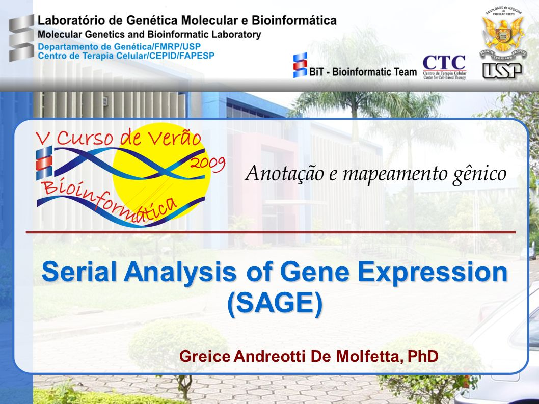 Serial Analysis of Gene Expression (SAGE) Greice Andreotti De Molfetta, PhD