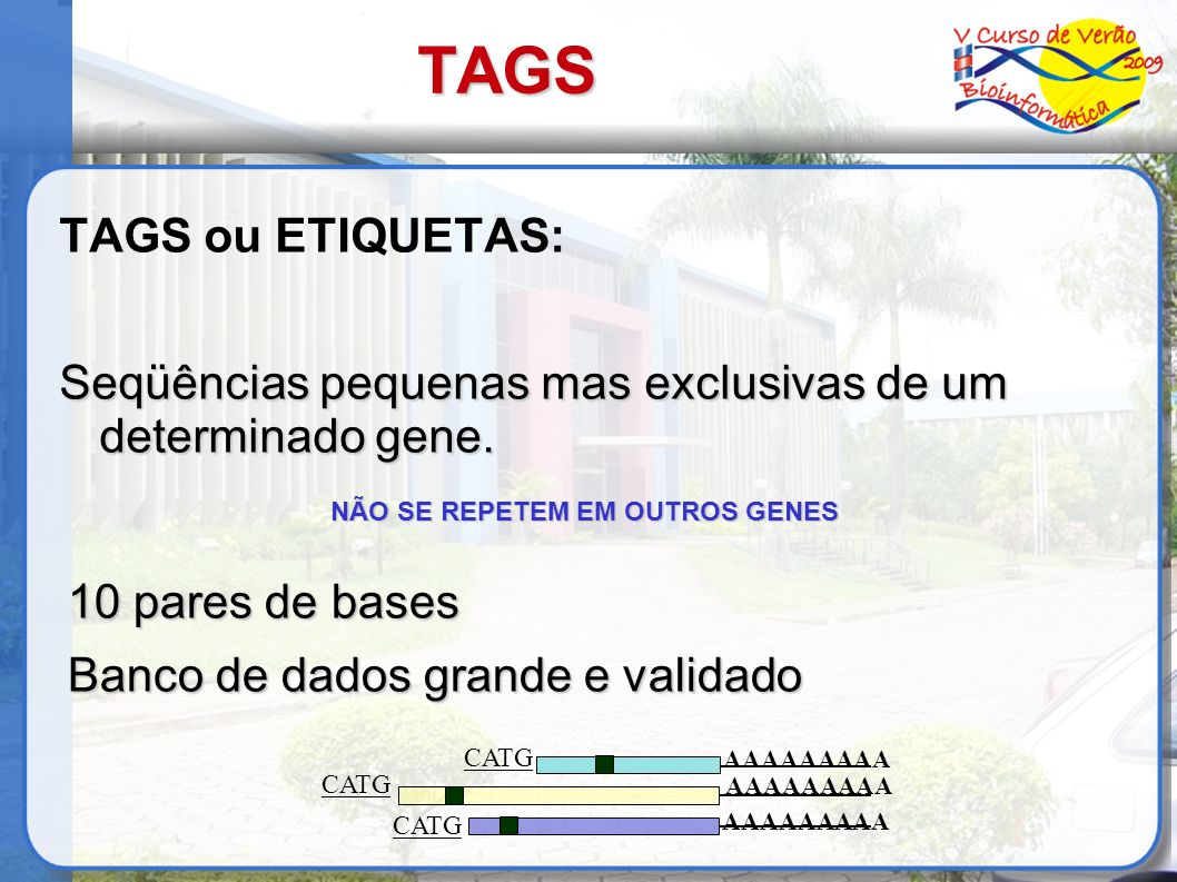 TAGS TAGS de 10 pb - identificam unicamente um transcrito; TAGS ligados uns aos outros facilitam clonagem e seqüenciamento de todos os transcritos da amostra; Análise: os tags são separados e identificados através de seus sítios de reconhecimento CATG; Velculescu et al, 1995