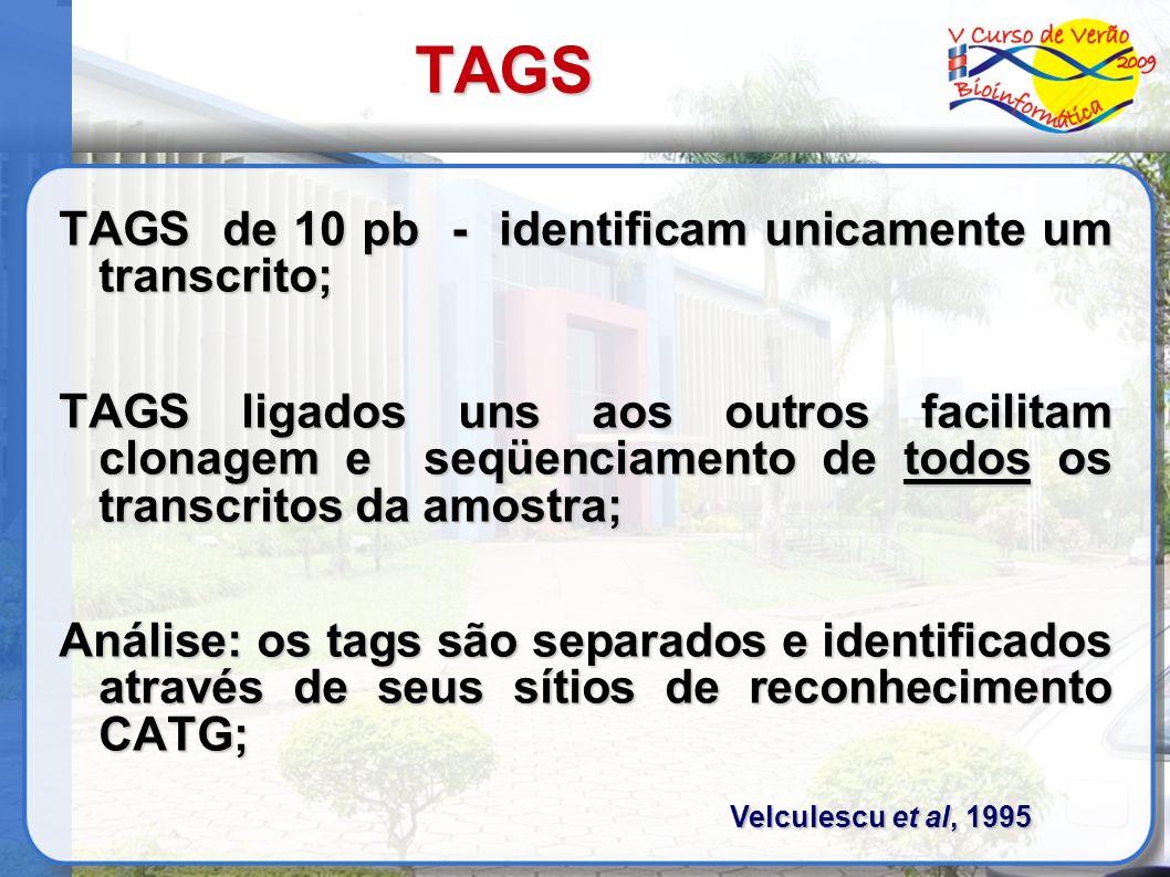 TAGS TAGS de 10 pb - identificam unicamente um transcrito; TAGS ligados uns aos outros facilitam clonagem e seqüenciamento de todos os transcritos da