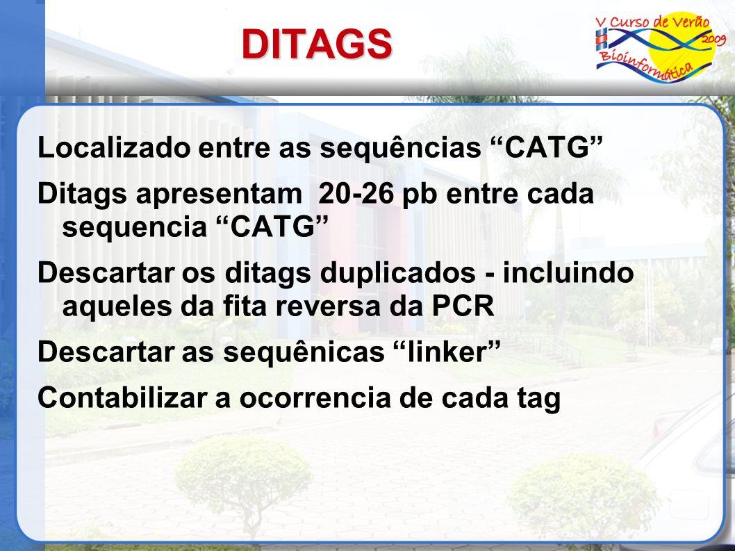 DITAGS Localizado entre as sequências CATG Ditags apresentam 20-26 pb entre cada sequencia CATG Descartar os ditags duplicados - incluindo aqueles da