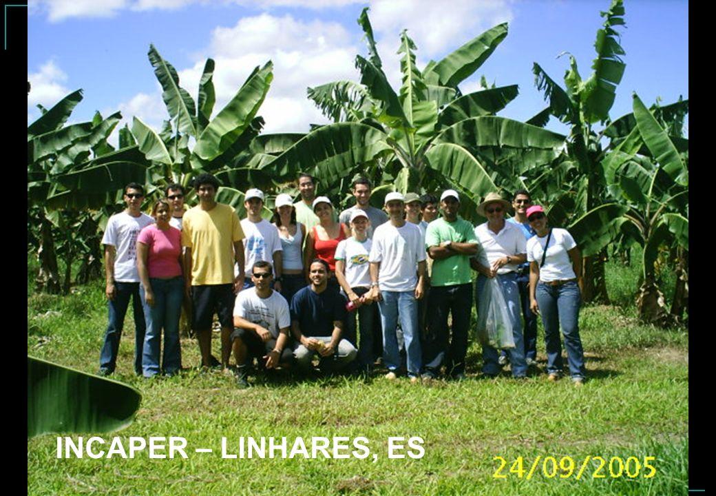 INCAPER – LINHARES, ES