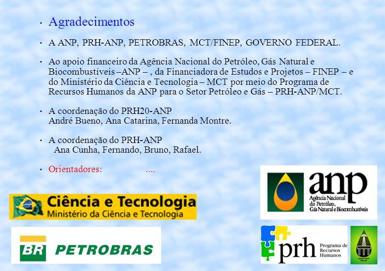 Agradecimentos A ANP, PRH-ANP, PETROBRAS, MCT/FINEP, GOVERNO FEDERAL. Ao apoio financeiro da Agência Nacional do Petróleo, Gás Natural e Biocombustíve
