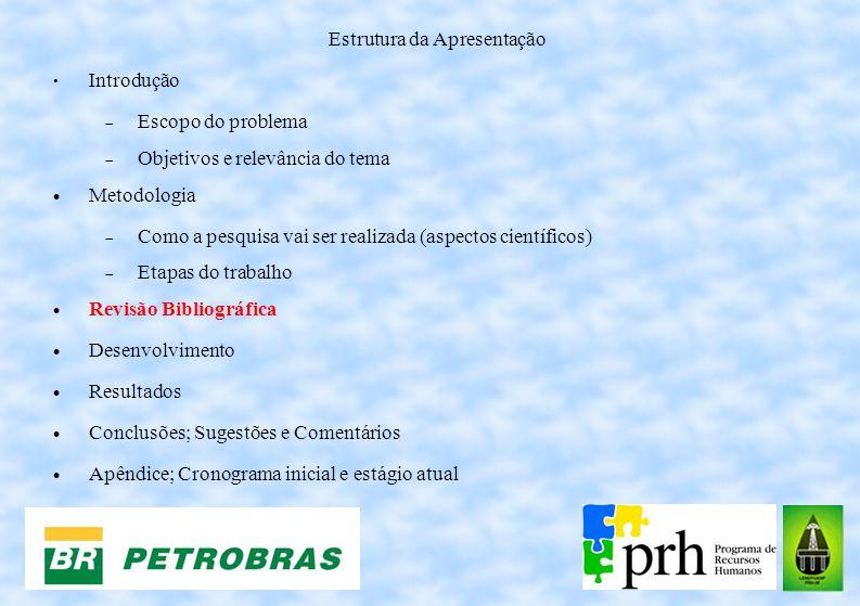 Estrutura da Apresentação Introdução Escopo do problema Objetivos e relevância do tema Metodologia Como a pesquisa vai ser realizada (aspectos científ
