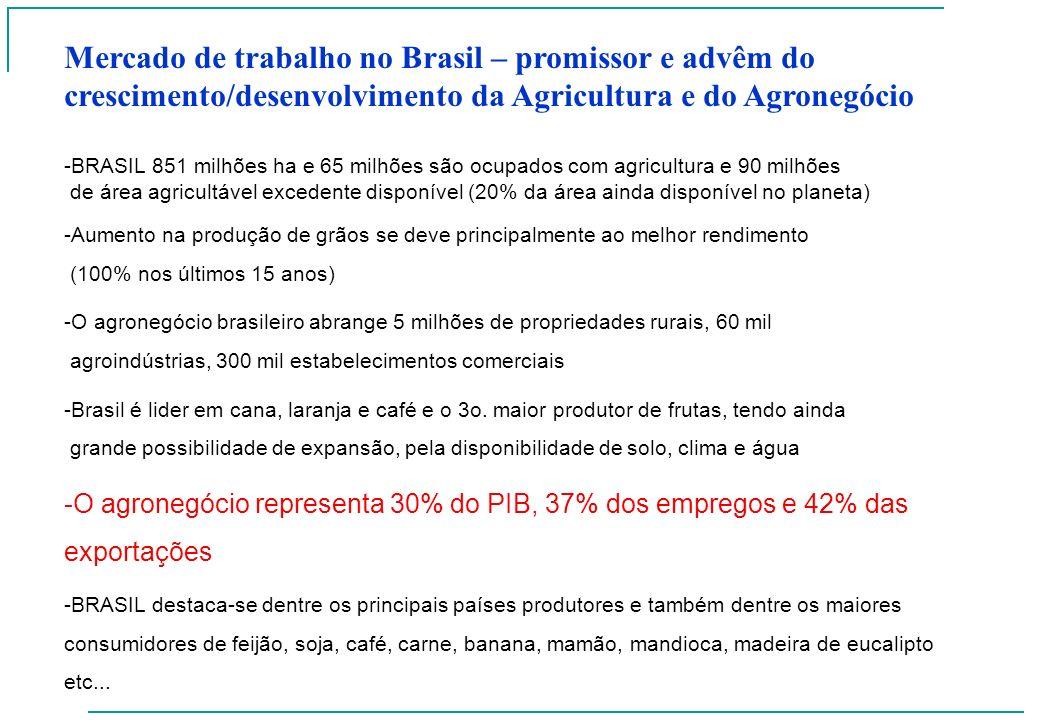 Mercado de trabalho no Brasil – promissor e advêm do crescimento/desenvolvimento da Agricultura e do Agronegócio -BRASIL 851 milhões ha e 65 milhões s