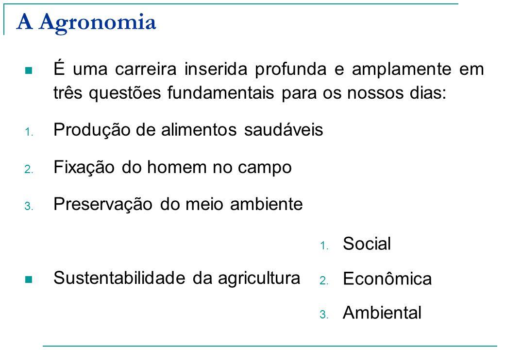 A Agronomia É uma carreira inserida profunda e amplamente em três questões fundamentais para os nossos dias: 1. Produção de alimentos saudáveis 2. Fix