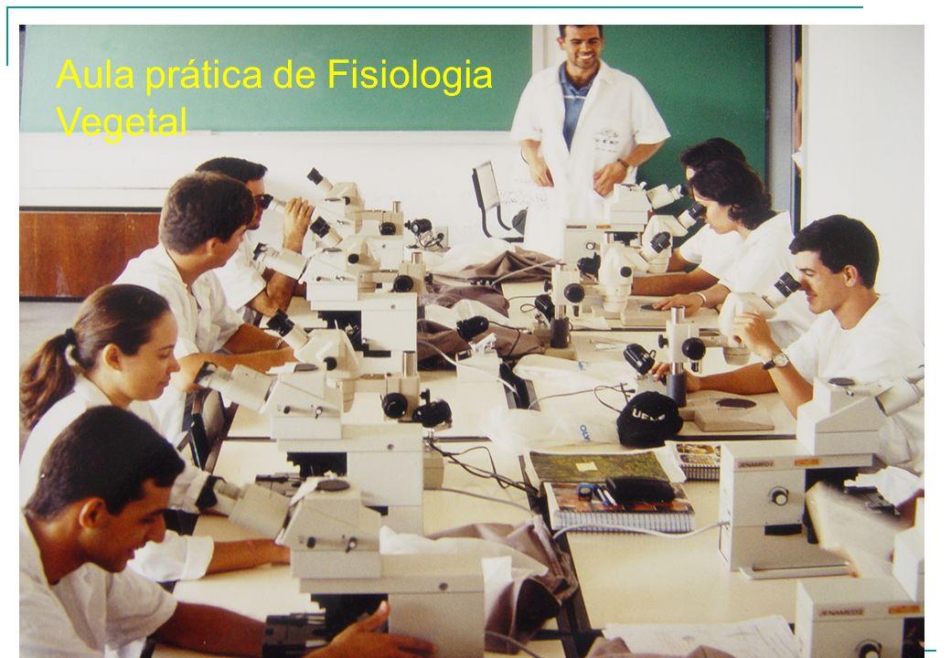 Aula prática de Fisiologia Vegetal