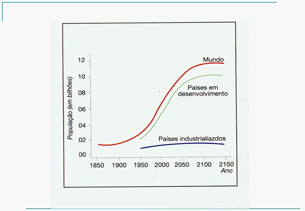 Número de formandos da Agronomia de 2003 a 2007 por semestre.