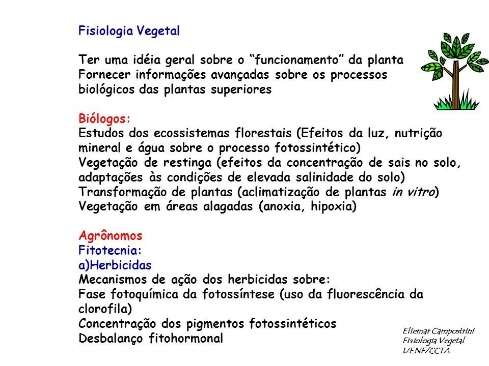 b)Fruticultura -Fisiologia Pós-colheita: estudo da liberação de etileno e CO 2 -Maximização de luz no dossel: Manga, goiaba, pêssego -Cultura de tecidos Eliemar Campostrini Fisiologia Vegetal UENF/CCTA