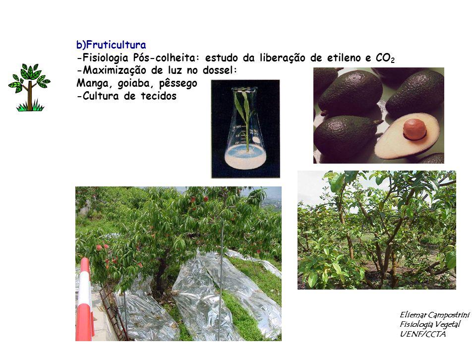 b)Fruticultura -Fisiologia Pós-colheita: estudo da liberação de etileno e CO 2 -Maximização de luz no dossel: Manga, goiaba, pêssego -Cultura de tecid