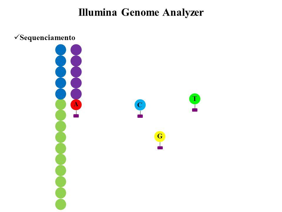 Sequenciamento Illumina Genome Analyzer A T C G