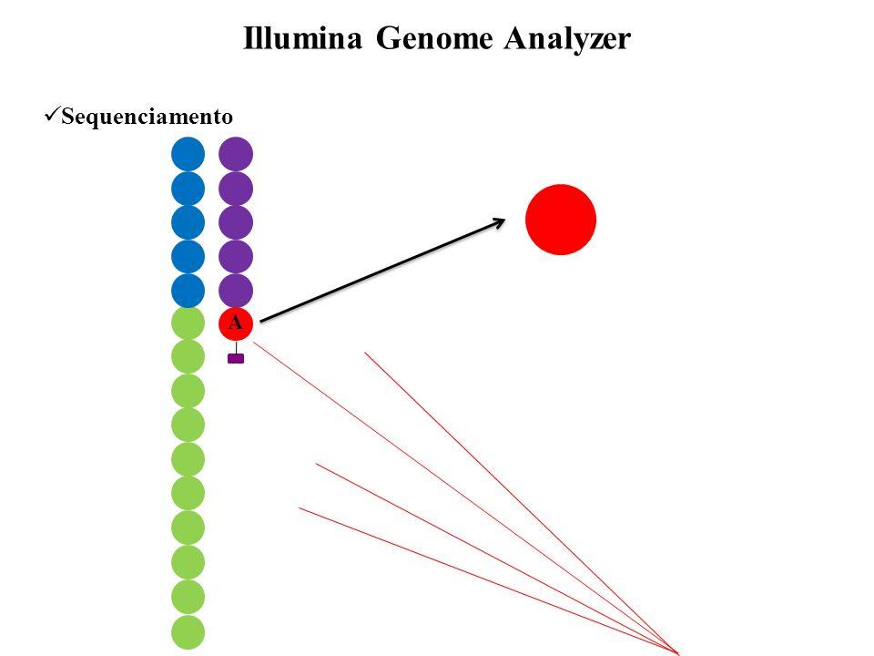 Sequenciamento Illumina Genome Analyzer A