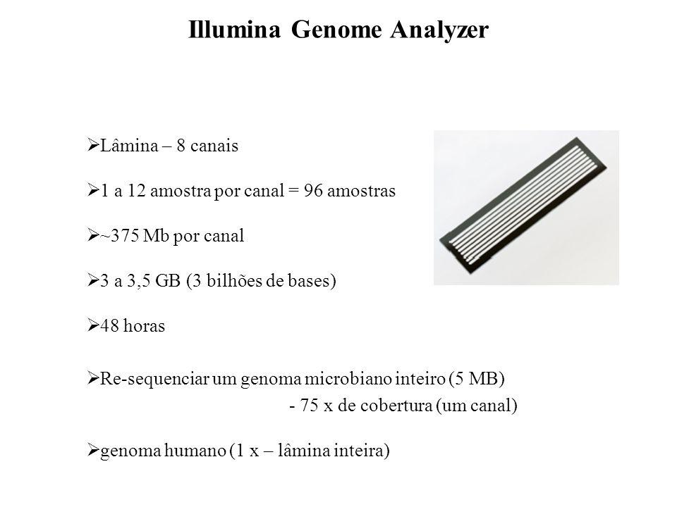 Preparação dos clusters Illumina Genome Analyzer A C T G G C T