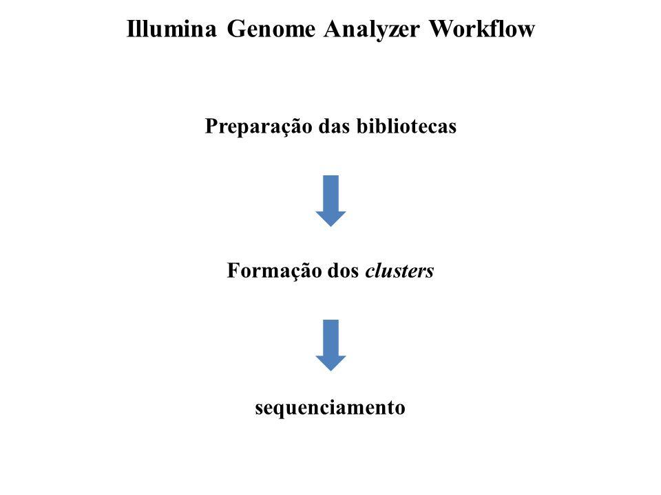 Illumina Genome Analyzer Workflow Preparação das bibliotecas Formação dos clusters sequenciamento