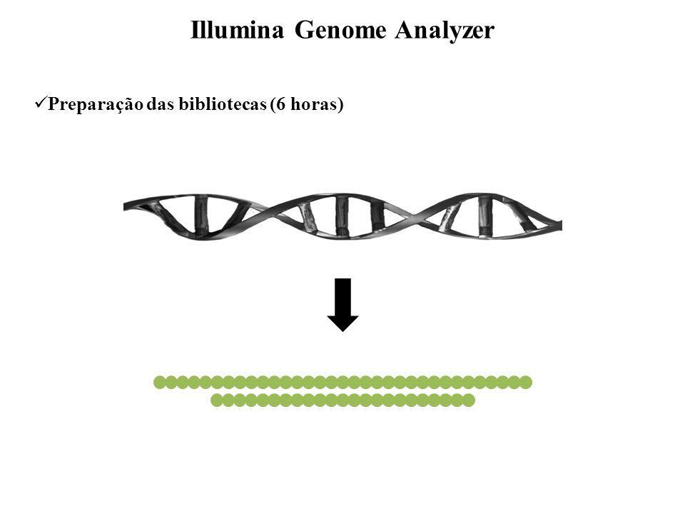 A A Preparação das bibliotecas Illumina Genome Analyzer