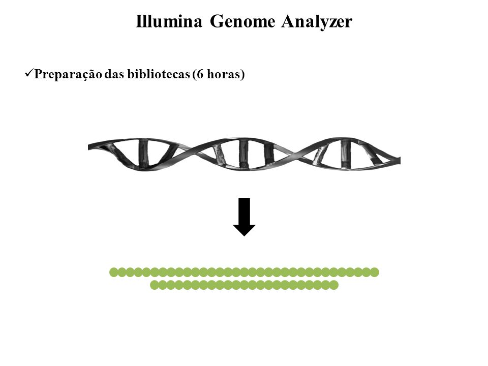 Sequenciamento Illumina Genome Analyzer