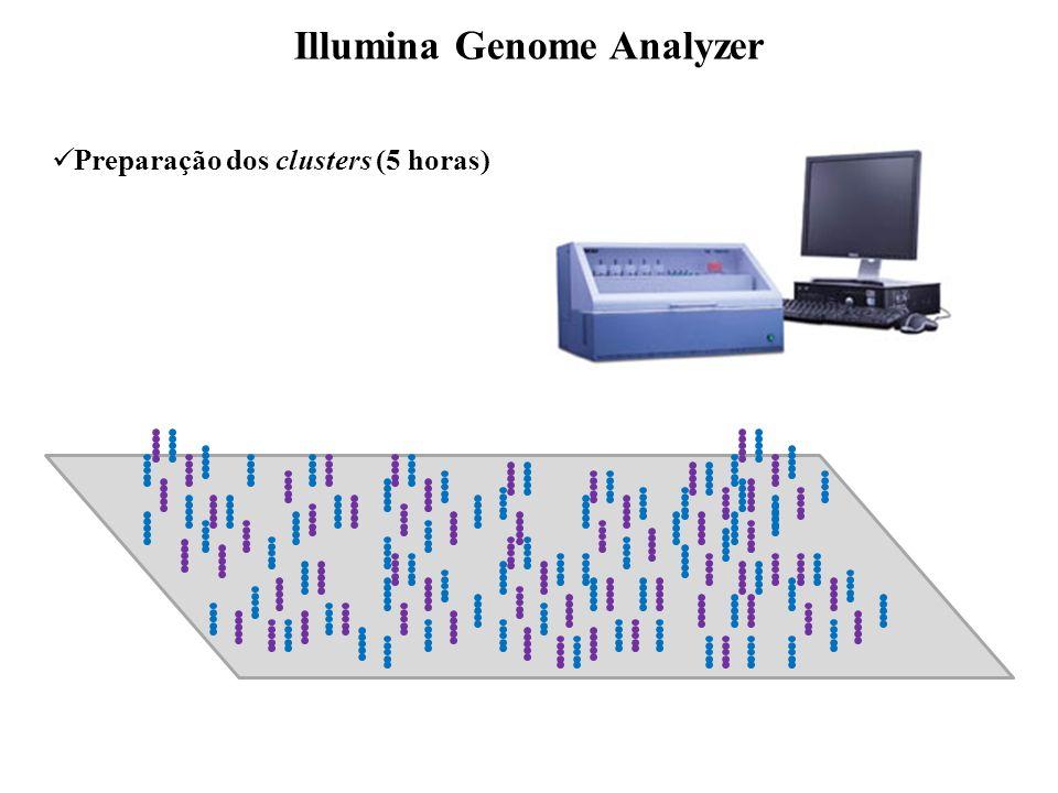 Preparação dos clusters (5 horas) Illumina Genome Analyzer