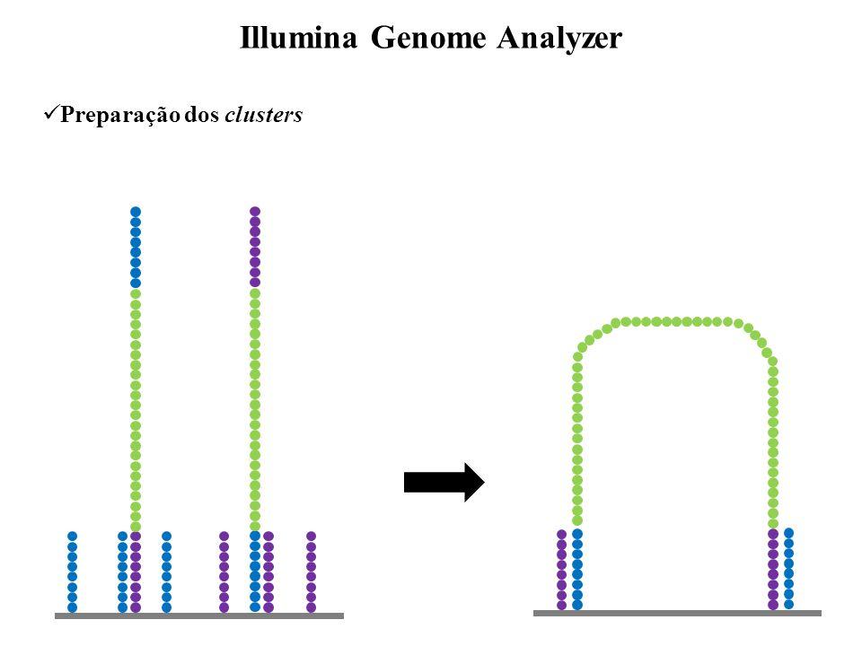 Aplicações Sequenciamento - DNA (de novo, re-sequenciamento) - transcriptoma (mRNA seq, tag, small RNA) Genotipagem ou descoberta - SNPs - Copy number variation (CNVs) - variações estruturais