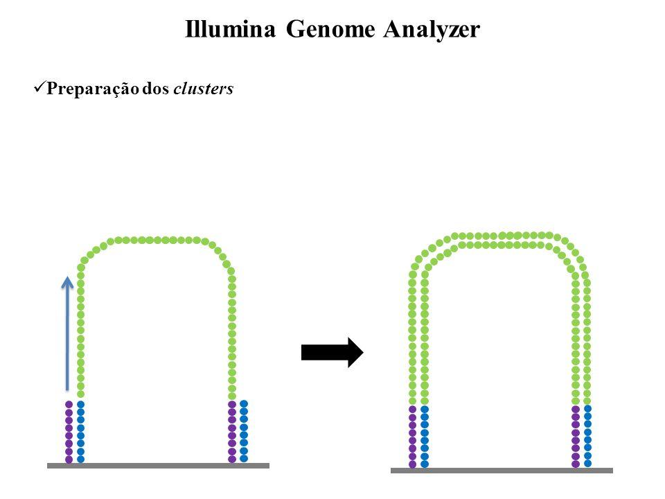 Sequenciamento Illumina Genome Analyzer A T C G A