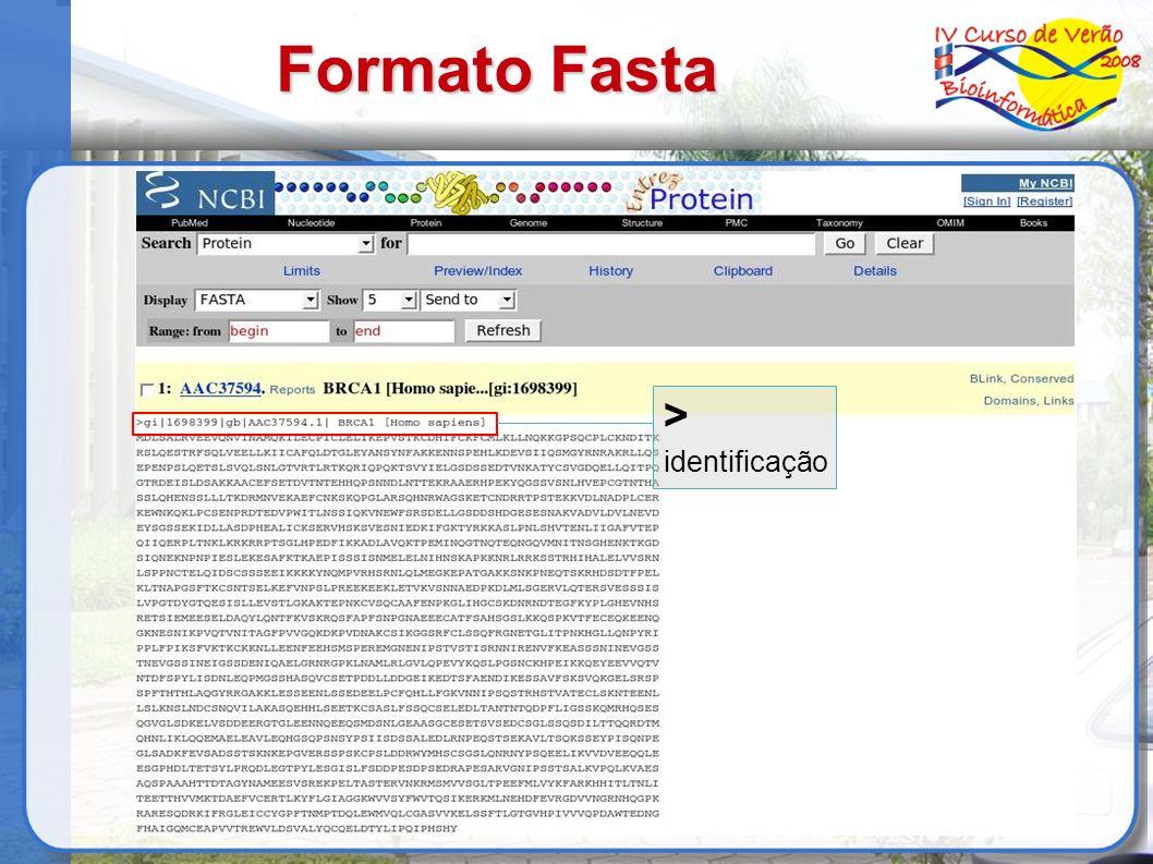 Formato Fasta > identificação