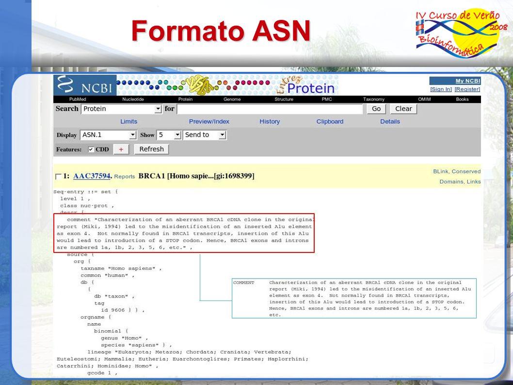 Formato ASN