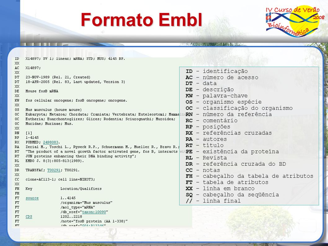 Formato Embl ID - identificação AC – número de acesso DT - data DE – descrição KW - palavra-chave OS – organismo espécie OC – classificação do organis