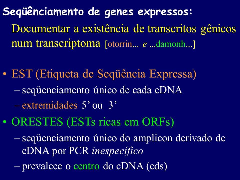 Seqüênciamento de genes expressos: Documentar a existência de transcritos gênicos num transcriptoma [otorrin... e...damonh...] EST (Etiqueta de Seqüên