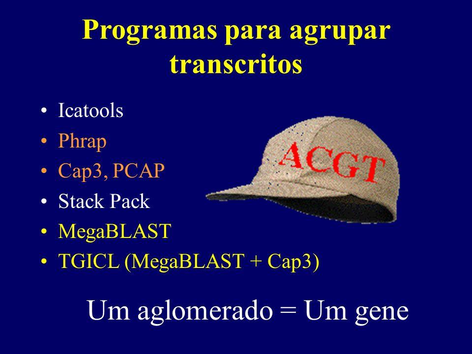 Programas para agrupar transcritos Icatools Phrap Cap3, PCAP Stack Pack MegaBLAST TGICL (MegaBLAST + Cap3) Um aglomerado = Um gene
