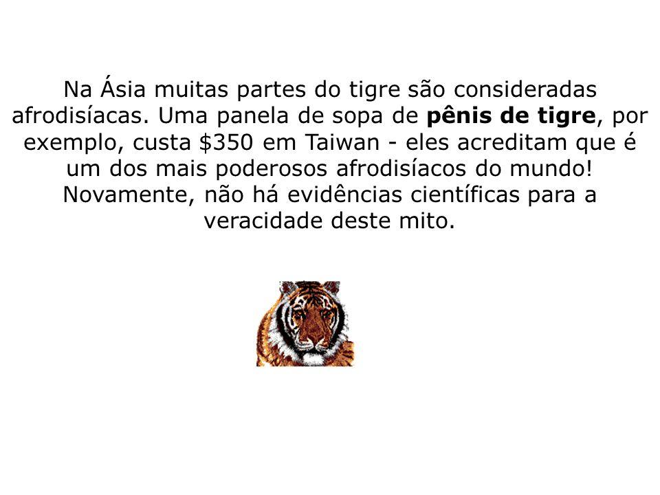 Na Ásia muitas partes do tigre são consideradas afrodisíacas. Uma panela de sopa de pênis de tigre, por exemplo, custa $350 em Taiwan - eles acreditam