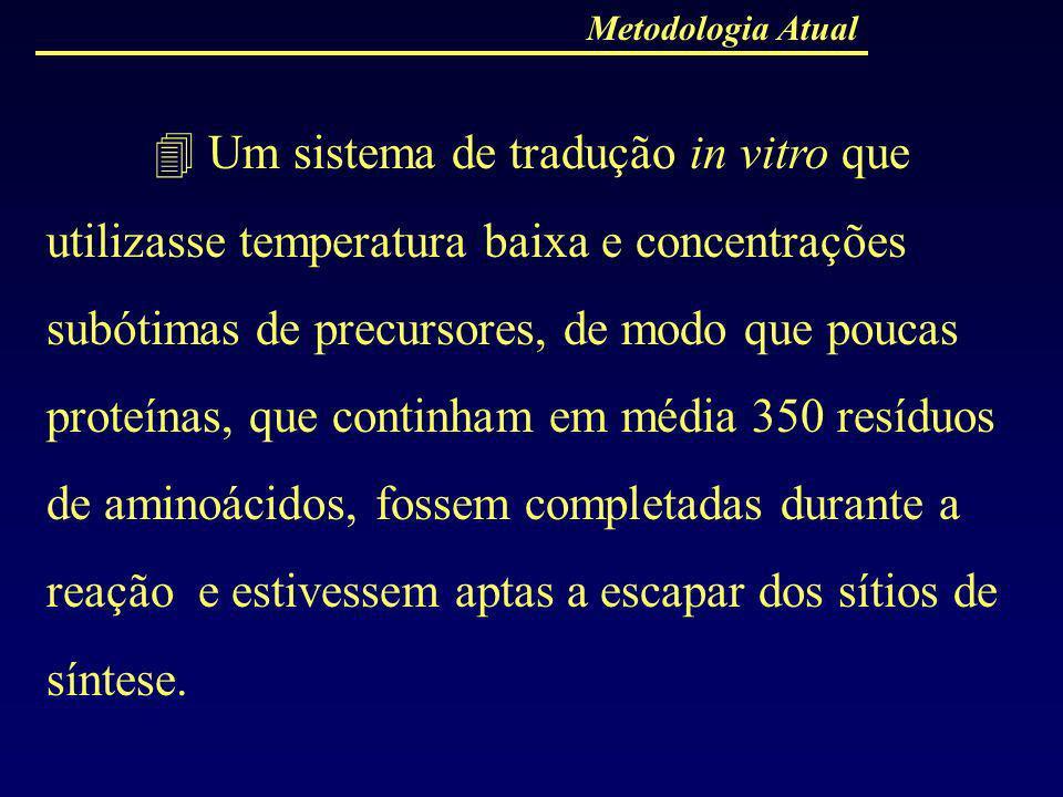 Metodologia Atual Um sistema de tradução in vitro que utilizasse temperatura baixa e concentrações subótimas de precursores, de modo que poucas proteí