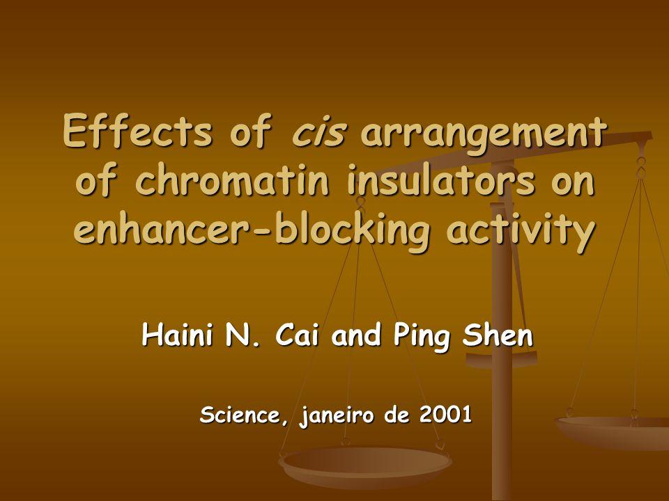 Os elementos suHw flanqueando o enhancer podem interagir como resultado da sua proximidade, levando a um melhor bloqueio do enhancer