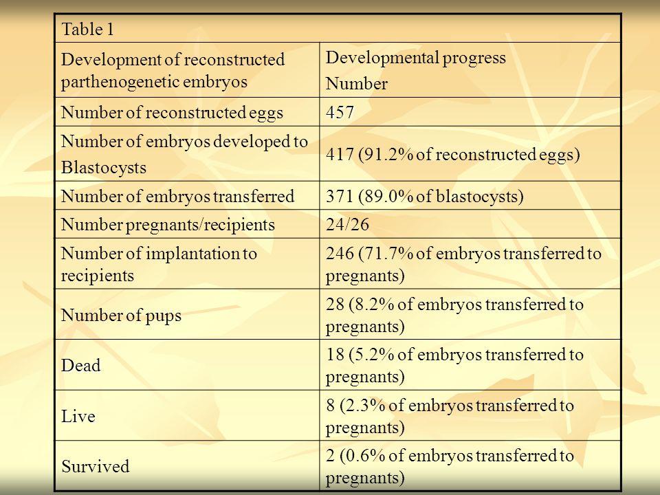 Table 1 Development of reconstructed parthenogenetic embryos Developmental progress Number Number of reconstructed eggs457 Number of embryos developed