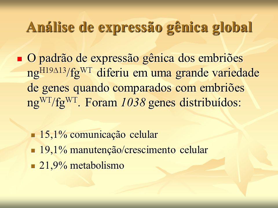 Análise de expressão gênica global O padrão de expressão gênica dos embriões ng/fg WT diferiu em uma grande variedade de genes quando comparados com e
