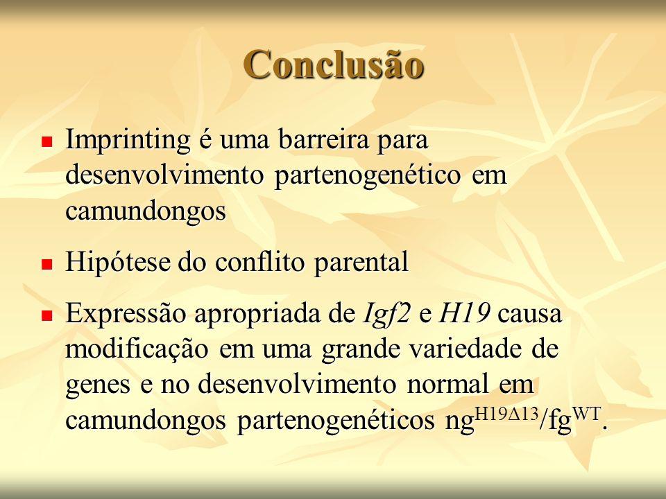 Conclusão Imprinting é uma barreira para desenvolvimento partenogenético em camundongos Imprinting é uma barreira para desenvolvimento partenogenético