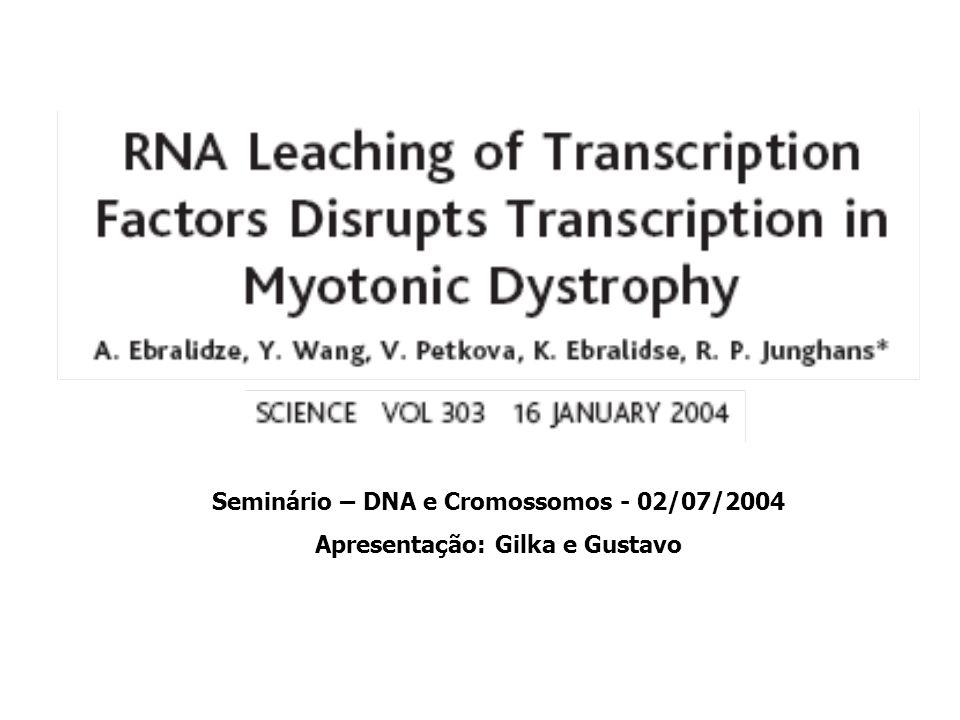 Seminário – DNA e Cromossomos - 02/07/2004 Apresentação: Gilka e Gustavo