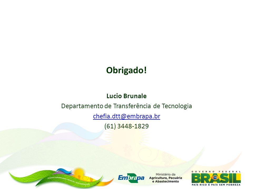 Obrigado! Lucio Brunale Departamento de Transferência de Tecnologia chefia.dtt@embrapa.br (61) 3448-1829