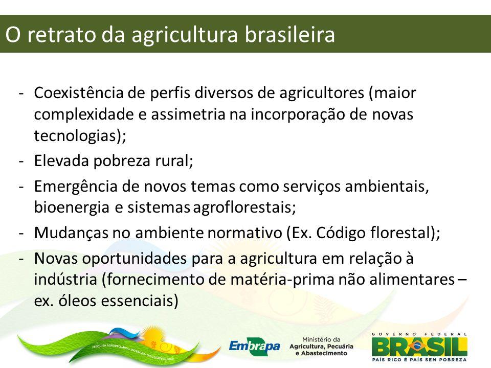 O retrato da agricultura brasileira -Coexistência de perfis diversos de agricultores (maior complexidade e assimetria na incorporação de novas tecnolo