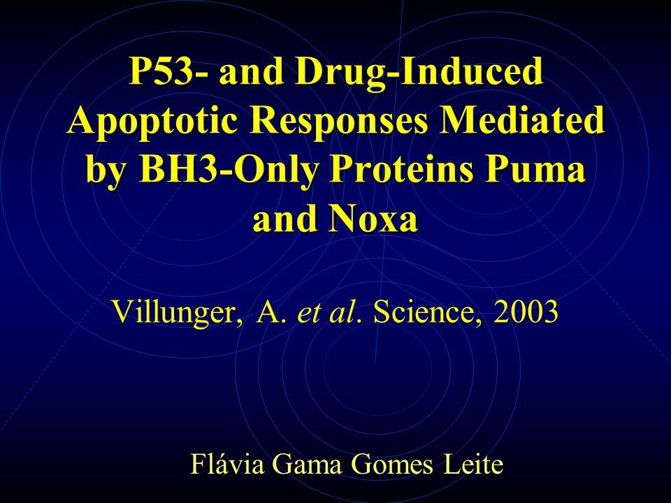 p53 – ciclo celular e apoptose p53 p21 Parada do ciclo celular Mais de 16 genes alvos Apoptose ?