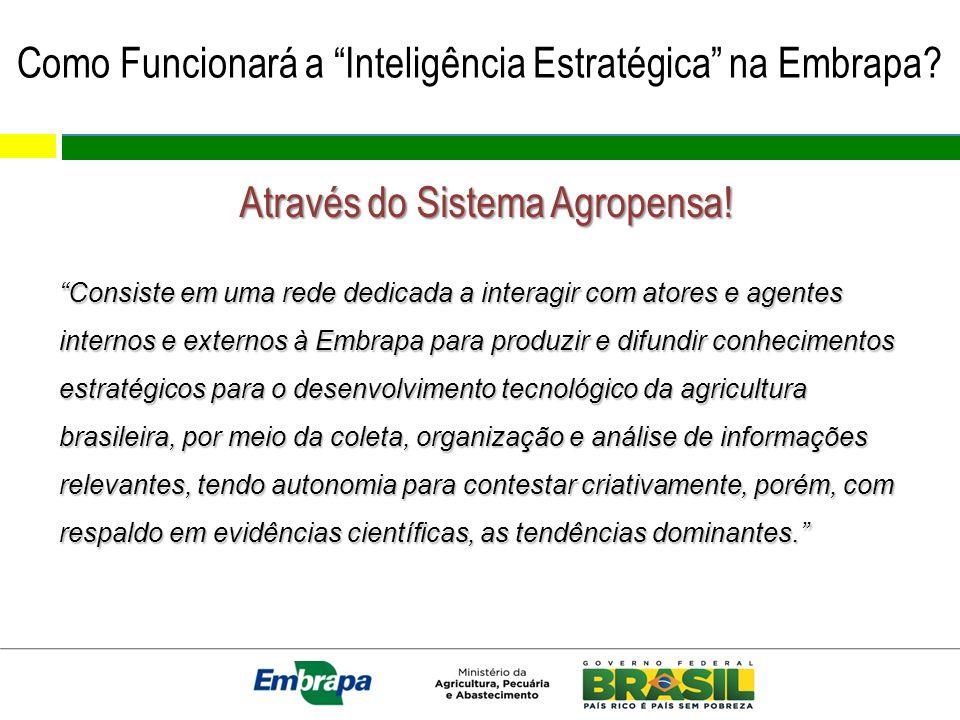 Como Funcionará a Inteligência Estratégica na Embrapa.