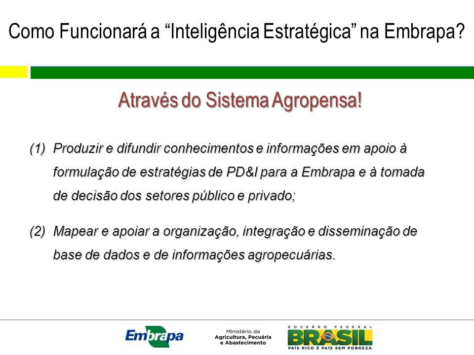 Como Funcionará a Inteligência Estratégica na Embrapa? Através do Sistema Agropensa! (1)Produzir e difundir conhecimentos e informações em apoio à for