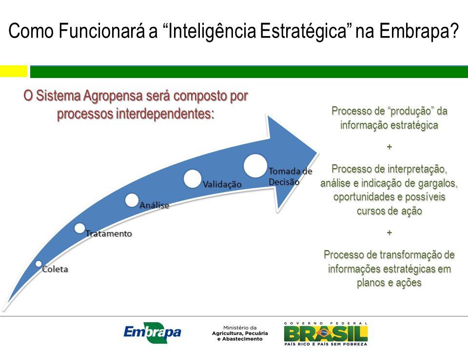Como Funcionará a Inteligência Estratégica na Embrapa? Processo de produção da informação estratégica + Processo de interpretação, análise e indicação